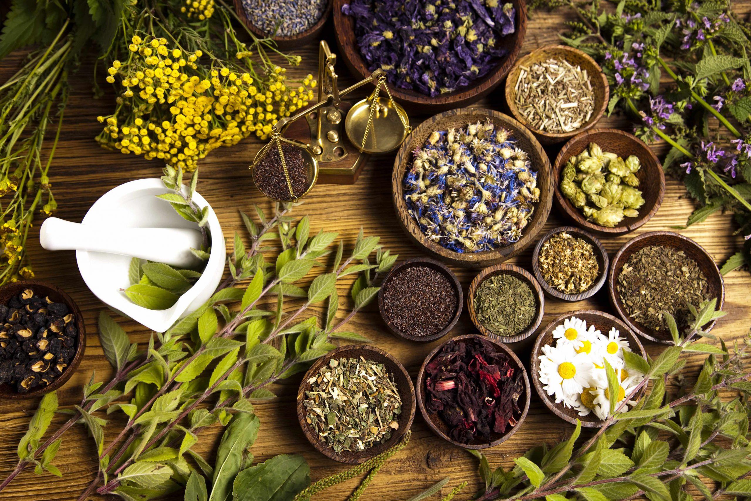 Wpływ składników roślinnych na wątrobę
